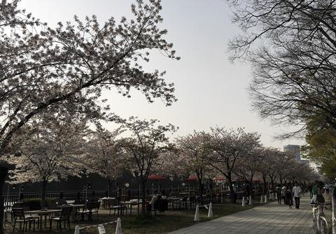 写真 2018-04-02 16 41 53.jpg